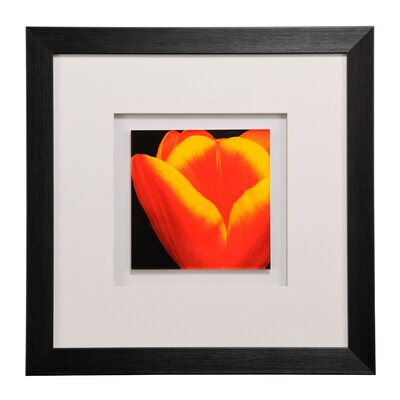 All Home Tulips Framed Graphic Art