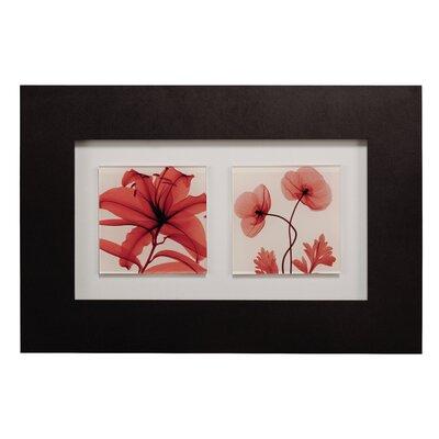 All Home Double Poppy Framed Graphic Art