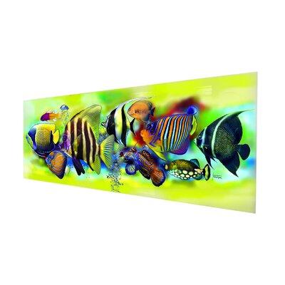 Genius Glasbild Tropical Fishes Grafikdruck