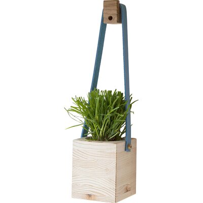 Factory Twenty One Square Hanging Basket