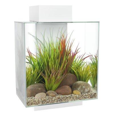 Hank 12 Gallon Edge Aquarium Kit Color: White