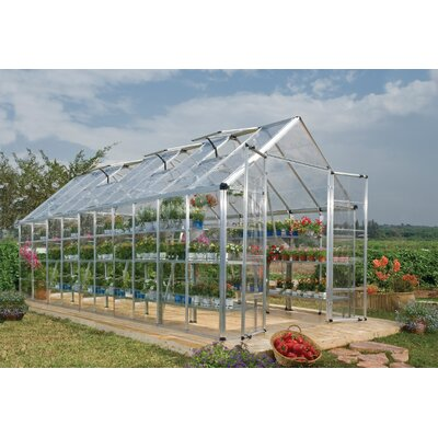 Snap & Grow 8 Ft. W x 20 Ft. D Greenhouse Finish: Silver