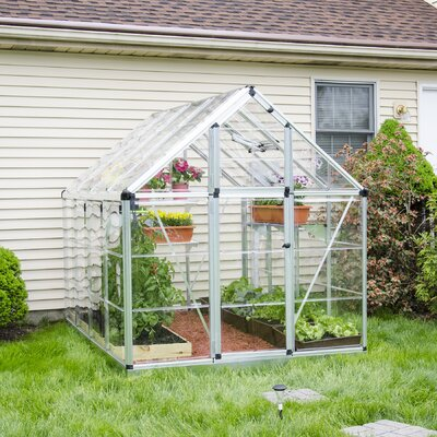 Snap & Grow 6 Ft. W x 8 Ft. D Polycarbonate Greenhouse Finish: Silver
