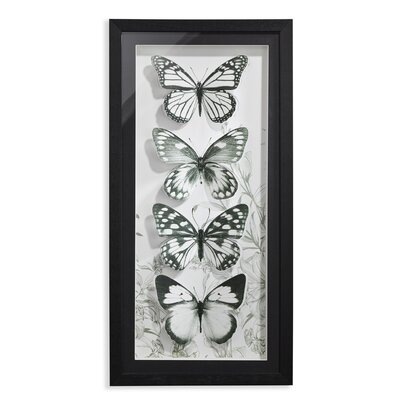 Arthouse Mono Butteflies Filled Framed Graphic Art
