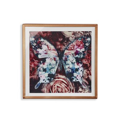 Arthouse Nocturnal Butterly Filled Framed Graphic Art