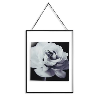 Arthouse Cabbage Rose Glass Framed Photographic Print