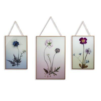 Arthouse Wild Flowers Glass 3 Piece Photographic Print Set