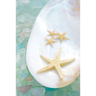 Alan Blaustein Sea Glass with Starfish 4 Photographic Print