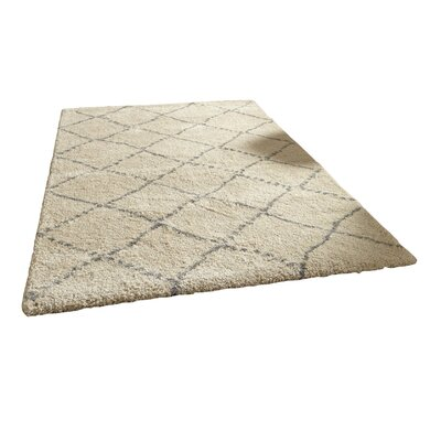 Daily Sales Royal Nomadic Champagne / Light Area Rug