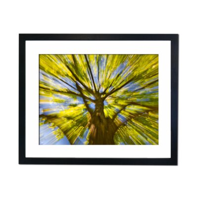 Culture Decor Motion Framed Graphic Art