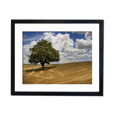 Culture Decor Harvested Field Framed Photographic Print