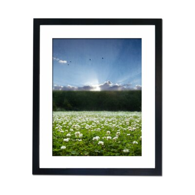 Culture Decor Clover Field Framed Photographic Print