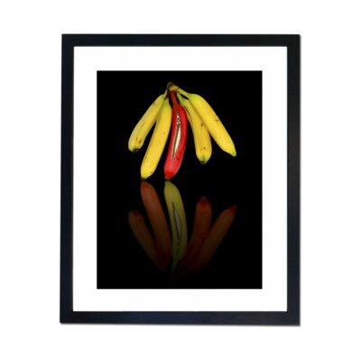 Culture Decor Odd One Out Framed Photographic Print