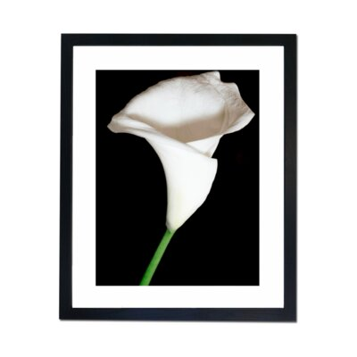 Culture Decor White and Pure Framed Photographic Print