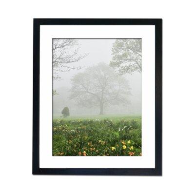 Culture Decor Flower Field Framed Photographic Print