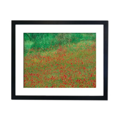 Culture Decor Poppy Field Framed Art Print