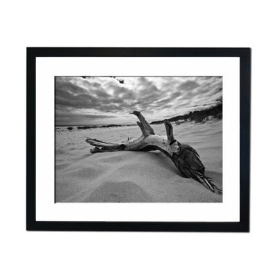 Culture Decor Weather Beach Branch Framed Photographic Print