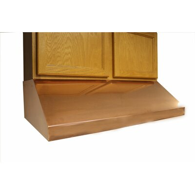"42"" Vegas 600 CFM Under Cabinet Range Hood Finish: Polished Copper"