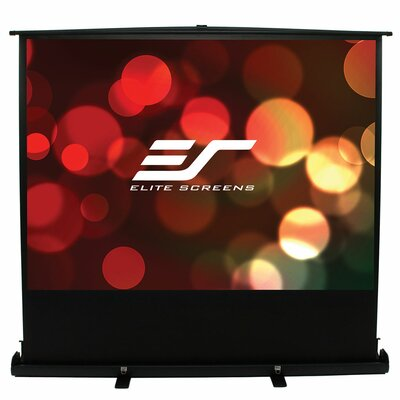 "ezCinema Plus Series White Portable Projection Screen Viewing Area: 100"" diagonal"