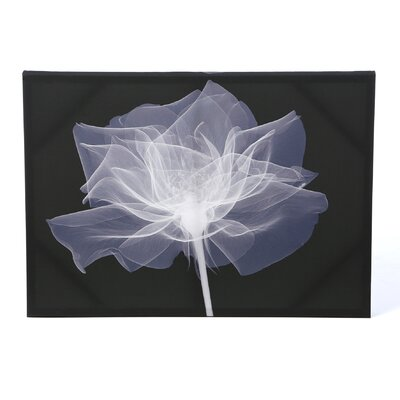 Graham & Brown X-Ray Flower Graphic Art on Canvas