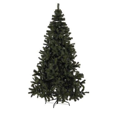 Caracella Künstlicher Weihnachtsbaum Quebec 1,5 m