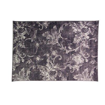 Caracella Teppich Graphic Toile in Aubergine