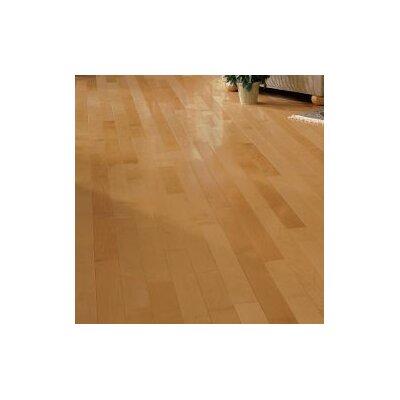 "Forest Valley Flooring Kennedale Prestige Plank 3-1/4"" Solid Light Maple Hardwood Flooring in Semi Gloss Caramel"