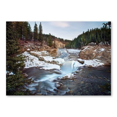 Americanflat Forest by Lina Kremsdorf Photographic Print