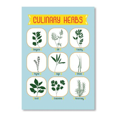 Americanflat Culinary Herbs by Patricia Pino Graphic Art Wrapped on Canvas
