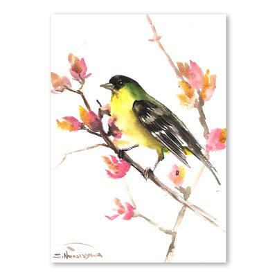 Americanflat Finch by Suren Nersisyan Art Print