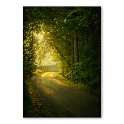 Americanflat Forest Day by Lina Kremsdorf Photographic Print in Green