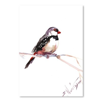 Americanflat Diamond Firetail by Suren Nersisyan Art Print