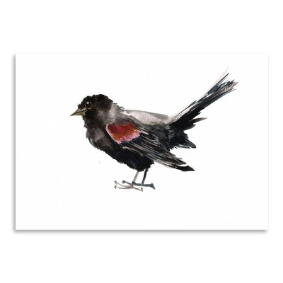 Americanflat Winged Blackbird Art Print