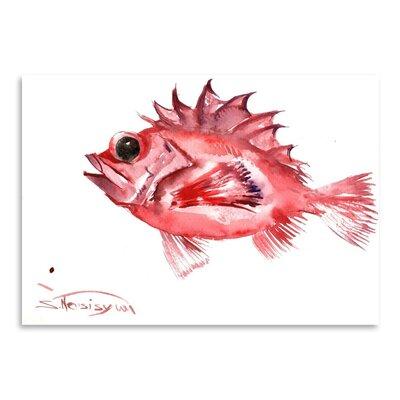 Americanflat Big Eye Redfish by Suren Nersisyan Art Print