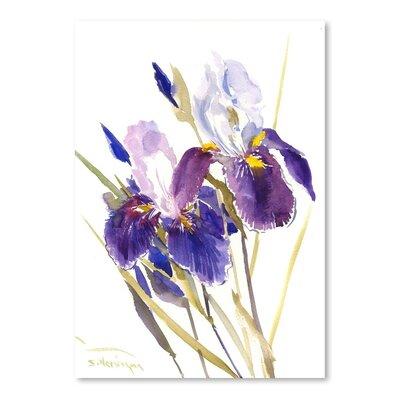 Americanflat Irises Art Print