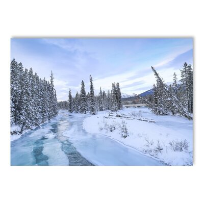 Americanflat Frozen Forest Photographic Print