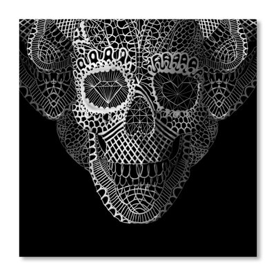 Americanflat Lace Skull Graphic Art
