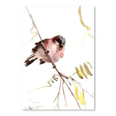 Americanflat Male Sparrow by Suren Nersisyan Art Print