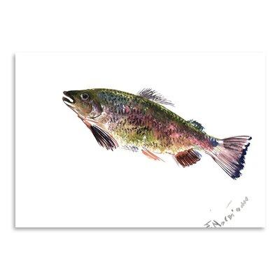 Americanflat Rainbow Trout 2 by Suren Nersisyan Art Print