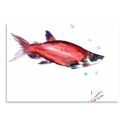Americanflat Salmon 3 Art Print