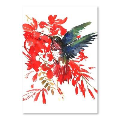 Americanflat Hummingbird Art Print