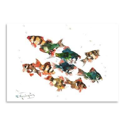 Americanflat Tiger Barb by Suren Nersisyan Art Print