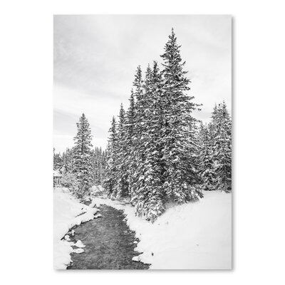 Americanflat Snow Forest 2015 Photographic Print