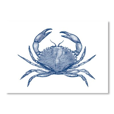 Americanflat Crab 2 Graphic Art Wrapped on Canvas