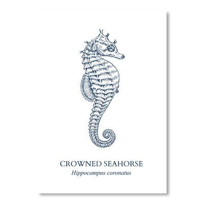 Americanflat Seahorse Sea Graphic Art