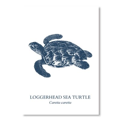Americanflat Sea Turtle Graphic Art Wrapped on Canvas