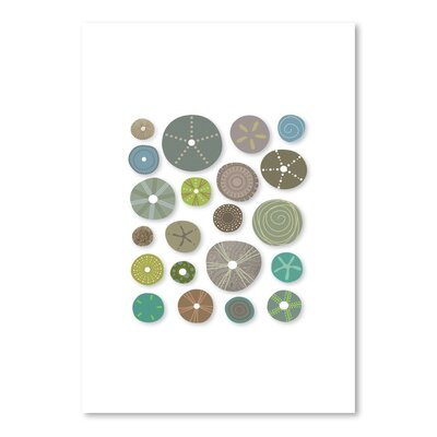 Americanflat Sea Urchins Graphic Art Wrapped on Canvas