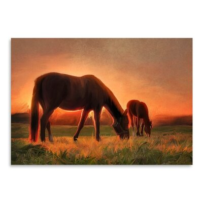 Americanflat Sunset Foal Art Print Wrapped on Canvas