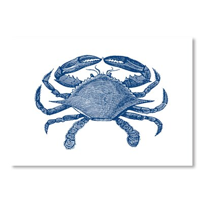 Americanflat Crab 1 Graphic Art Wrapped on Canvas