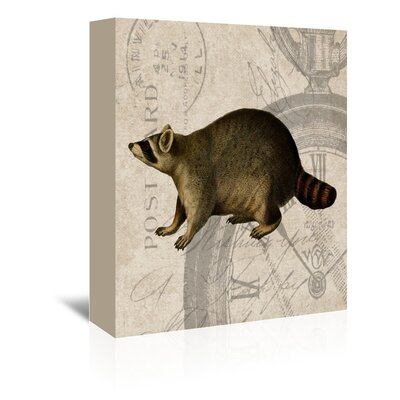 Americanflat Racoon Graphic Art Wrapped on Canvas
